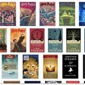 screenshot of book covers in catalog